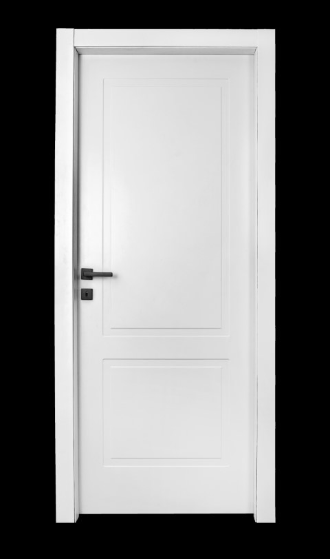דלת מדגם - F20